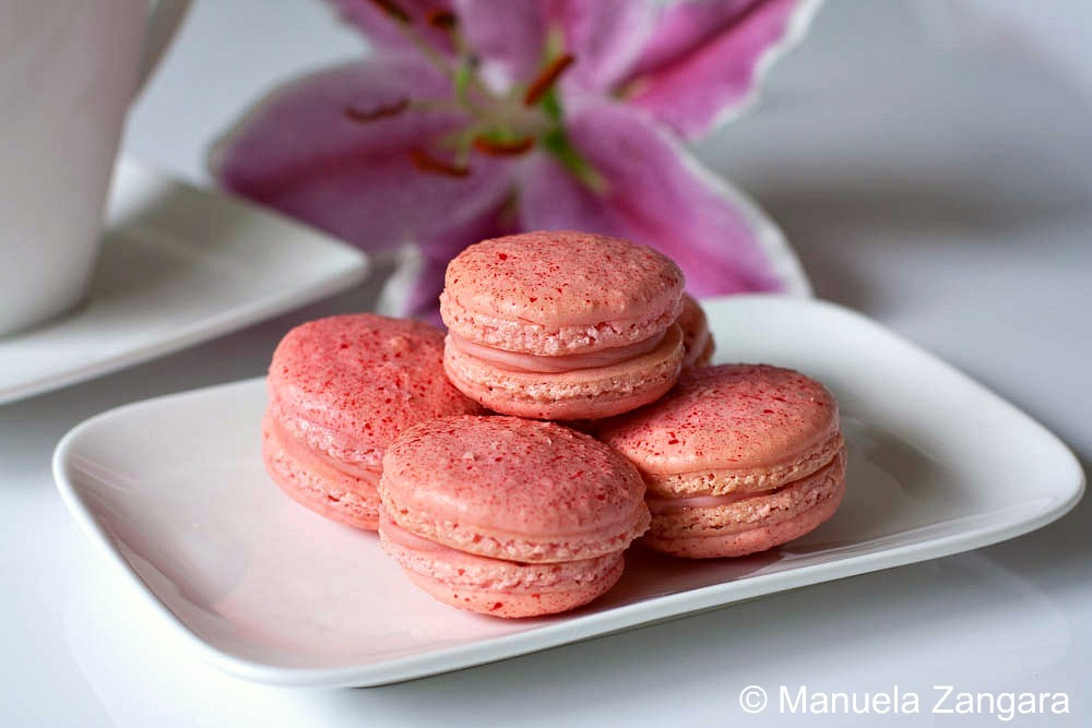 Raspberry & White Chocolate Macarons