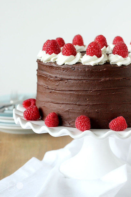 Dark Chocolate Raspberry Truffle Cake{by Ambrosia}